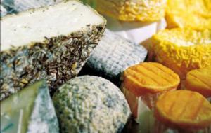 Vinicus - Wein, Sekt, Destillate, Delikatessen - Käsetheke beim nächsten Besuch unbedingt genau studieren!